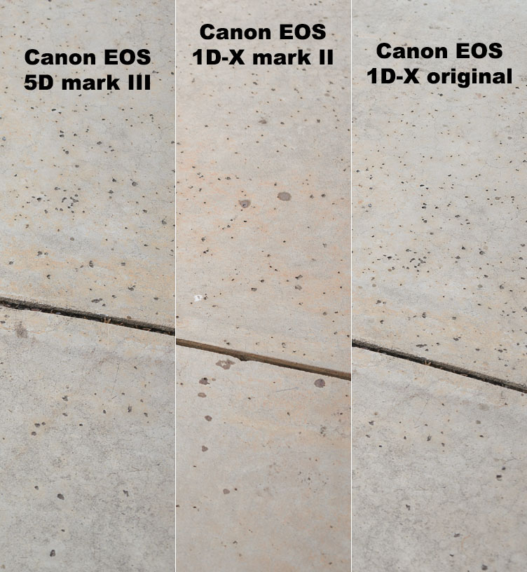 Difference in grey tones between Canon EOS 5Dmk3, 1D-X original, and 1D-X mark II.