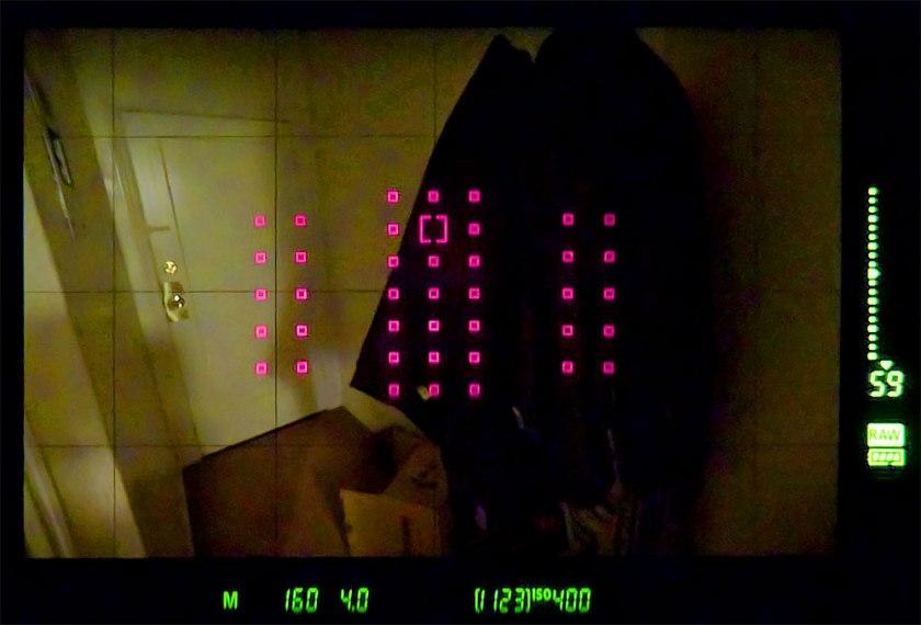1D-x-mark-2-viewfinder-red-af-points