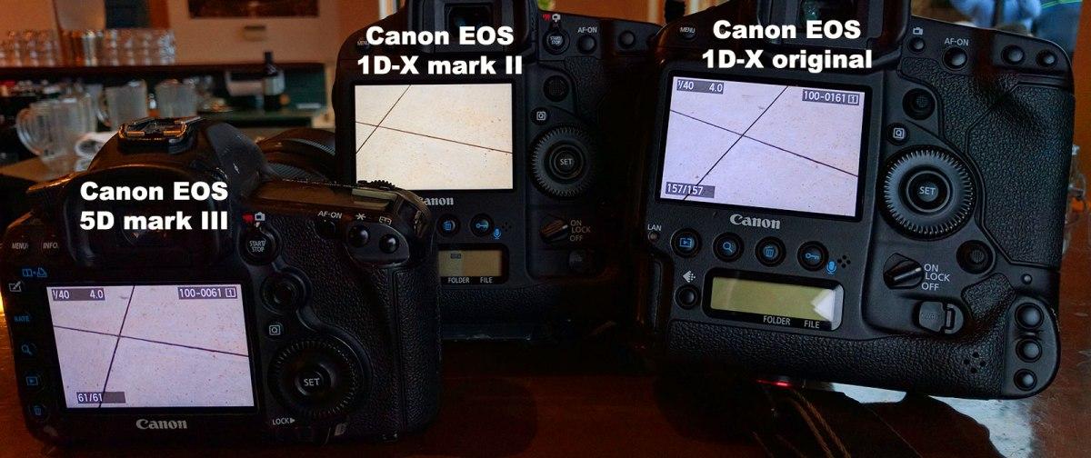 Canon EOS 5D mark III screen vs 1D-X original screen vs 1D-X mark II screen. The 1DX mark II has a noticeably warmer color balance.